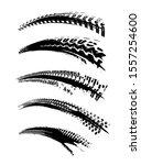 automobile tire tracks vector...   Shutterstock .eps vector #1557254600