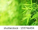 bamboo garden | Shutterstock . vector #155746454
