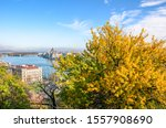 Amazing cityscape of Budapest, Hungary with autumn tree in the foreground. Hungarian Parliament Building, Orszaghaz, in the background on the other side of the Danube river. Beautiful cities.