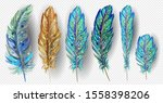 realistic set with small and... | Shutterstock .eps vector #1558398206