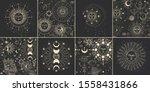vector illustration set of moon ... | Shutterstock .eps vector #1558431866