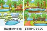 background scenes of animals in ... | Shutterstock .eps vector #1558479920