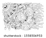 coloring book for adult and... | Shutterstock .eps vector #1558506953