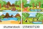 background scenes of animals in ...   Shutterstock .eps vector #1558507130