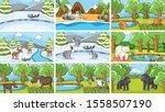 background scenes of animals in ... | Shutterstock .eps vector #1558507190