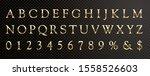 golden shiny metallic font ... | Shutterstock .eps vector #1558526603