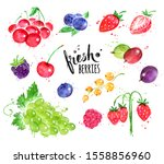 hand painted watercolor... | Shutterstock . vector #1558856960