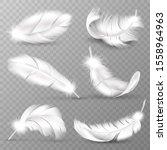 Realistic White Feathers. Bird...