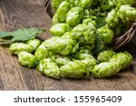 green hop cones on a wooden... | Shutterstock . vector #155965409