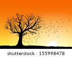 autumn tree silhouette in... | Shutterstock .eps vector #155998478