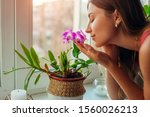Woman Smelling Dendrobium...
