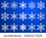 set of beautiful christmas... | Shutterstock . vector #1560117620