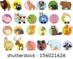 set of cute cartoon animals    Shutterstock .eps vector #156021626
