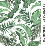 jungle vector pattern with... | Shutterstock .eps vector #1560382556