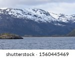 Small photo of Icebergs in Parry Fjord, Chile, 11 Oct 15