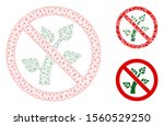mesh no botany model with... | Shutterstock .eps vector #1560529250