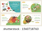 organic food web isometric web...