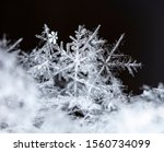 winter photo of snowflakes in... | Shutterstock . vector #1560734099