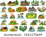 set of different plants and...   Shutterstock .eps vector #1561170649