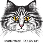 vector sketch of a long haired...   Shutterstock .eps vector #156129134