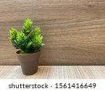 plastic tree in flowerpot on... | Shutterstock . vector #1561416649