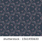 abstract background texture in...   Shutterstock .eps vector #1561450633