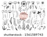 beautiful big set of floral... | Shutterstock .eps vector #1561589743