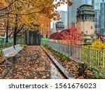 Autumn Foliage And Colorful...