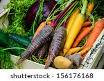 different color carrots  red... | Shutterstock . vector #156176168