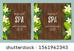tropical backdrop with exotic... | Shutterstock .eps vector #1561962343