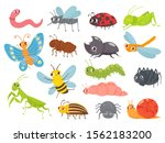 cute cartoon insects. funny... | Shutterstock .eps vector #1562183200