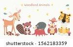 cute woodland animals clipart...   Shutterstock .eps vector #1562183359