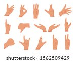 flat hands. cartoon human male... | Shutterstock .eps vector #1562509429
