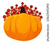 big pumpkin with rowan in the...   Shutterstock .eps vector #1562545393
