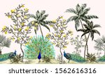 exotic chinoiserie wallpaper... | Shutterstock .eps vector #1562616316