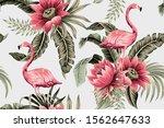 tropical vintage pink flamingo  ... | Shutterstock .eps vector #1562647633