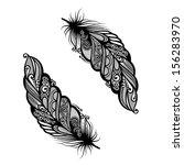 peerless decorative feather ... | Shutterstock .eps vector #156283970