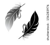 peerless decorative feather ... | Shutterstock .eps vector #156283976