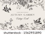 Autumn Garden. Vector...