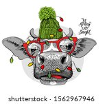 adorable cow in a green knitted ... | Shutterstock .eps vector #1562967946