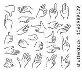 hands gestures. human pointing... | Shutterstock .eps vector #1562989129