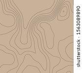 contour vector illustration.... | Shutterstock .eps vector #1563089890