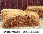 stacks of straw. alternative... | Shutterstock . vector #1563187330
