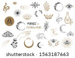 vector witch magic design... | Shutterstock .eps vector #1563187663