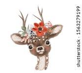 Cute Hand Drawn Deer  Fawn In...