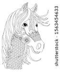 Hand Drawn Horse Head. Sketch...