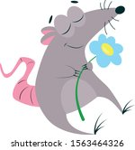 Cute Gray Rat Sitting And...