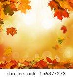 autumn leaves    Shutterstock . vector #156377273