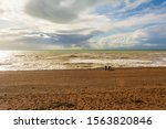 Brighton And Hove  East Sussex...