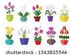 Flower Flat Icon Set Isolated...